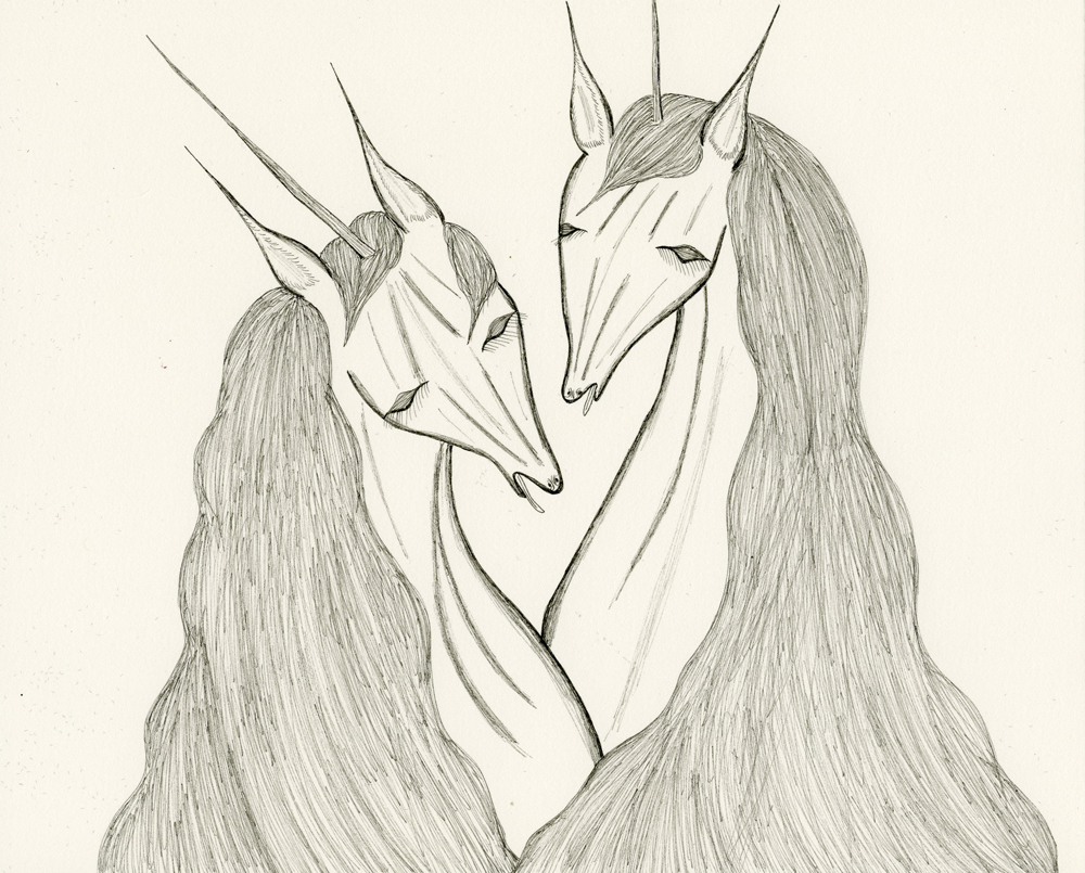 horse and unicorn drawings