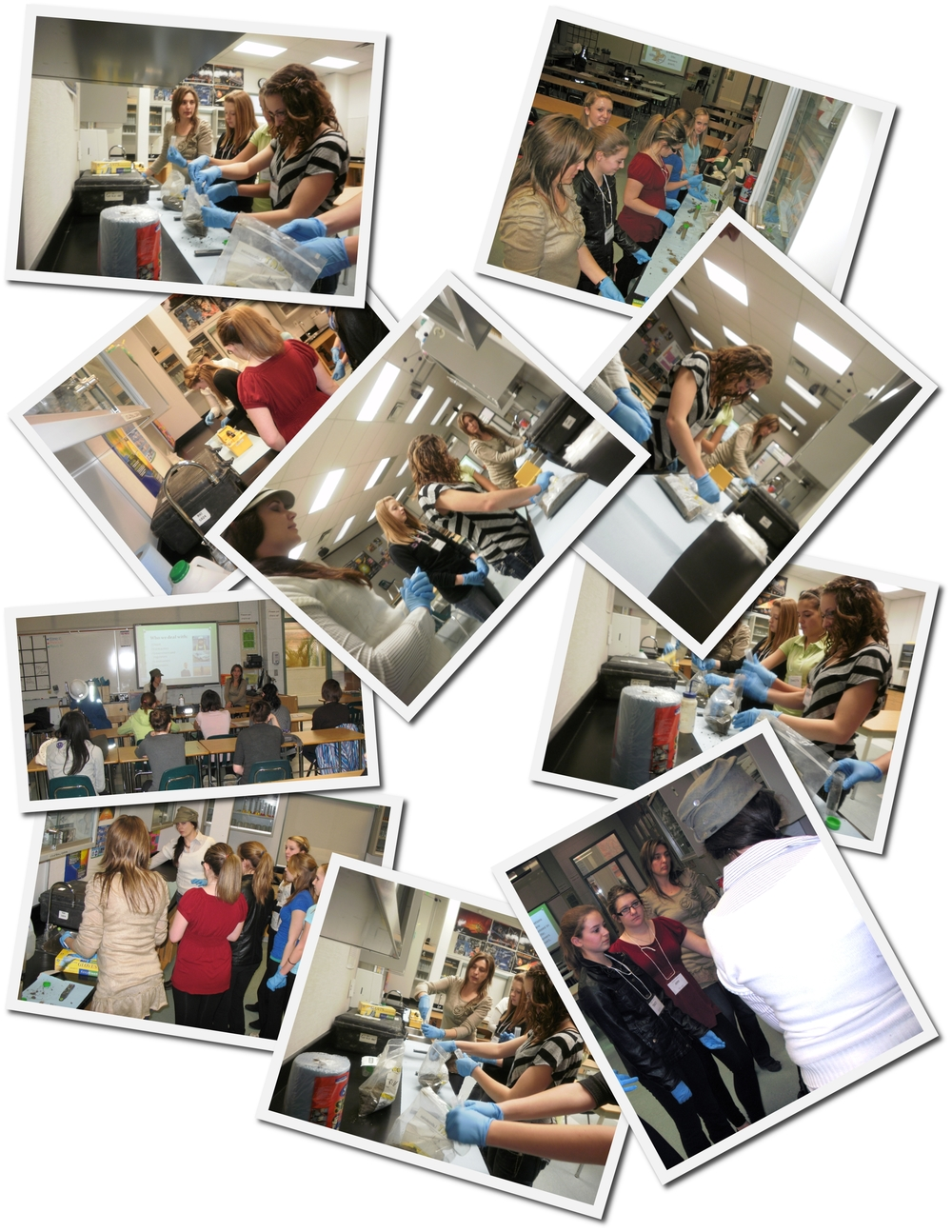 2012-01-30 Operation Minerva Environmental Engineering Collage.jpg