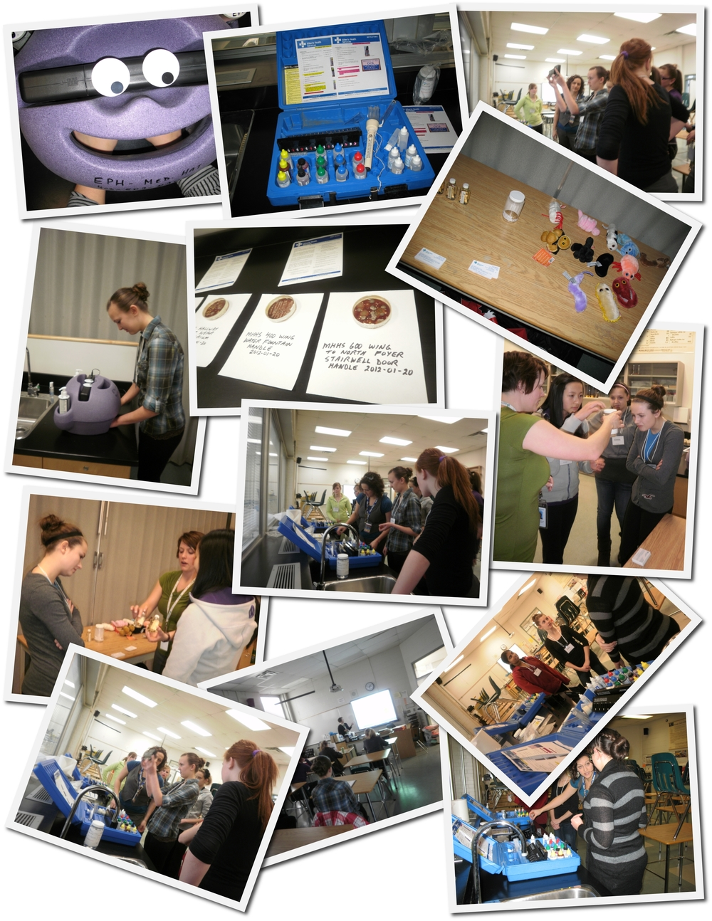 2012-01-30 Operation Minerva Health Inspectors Collage.jpg