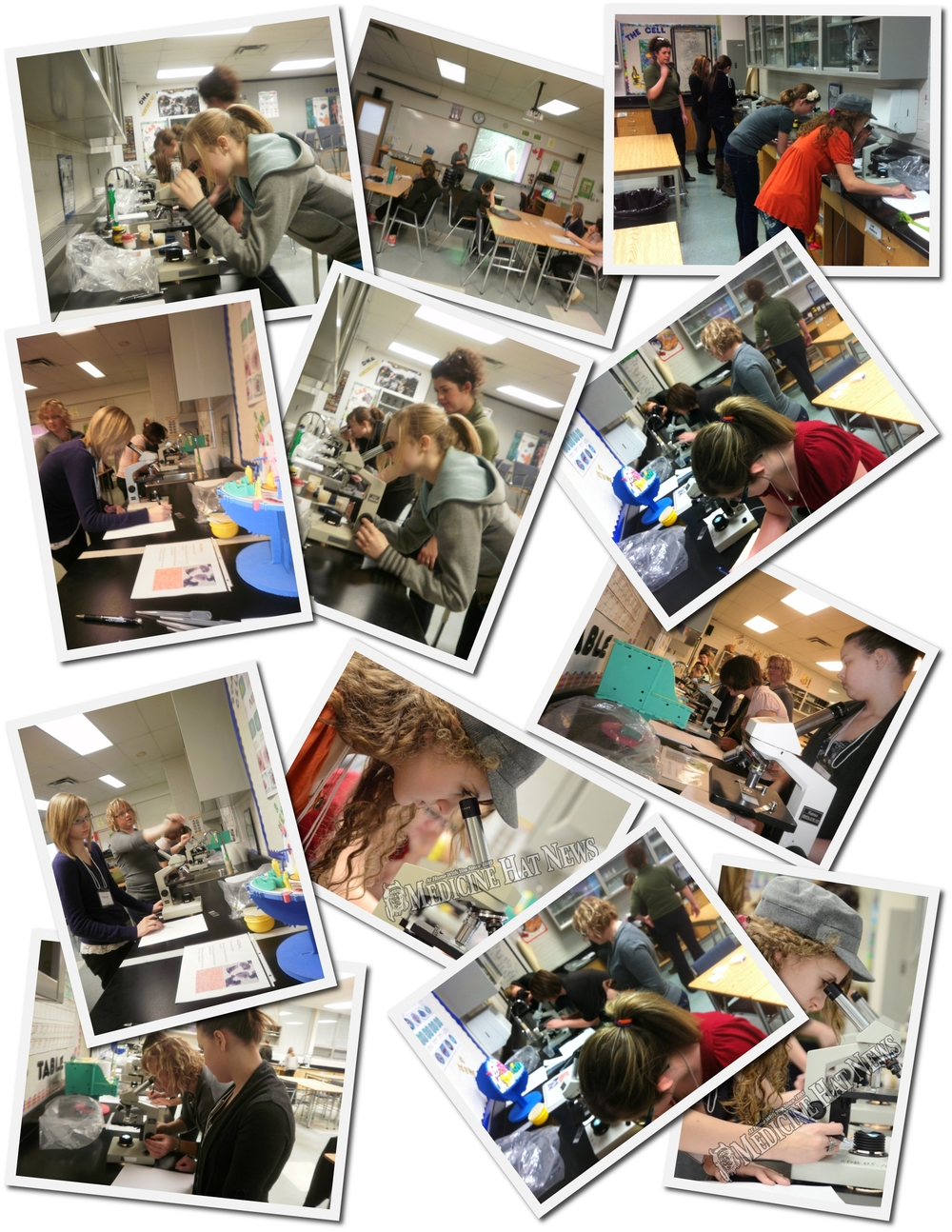 2012-01-30 Operation Minerva Life Under the Microscope Collage.jpg