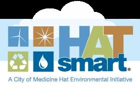 Hat Smart