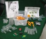 Praxis Bugs Podz Kit