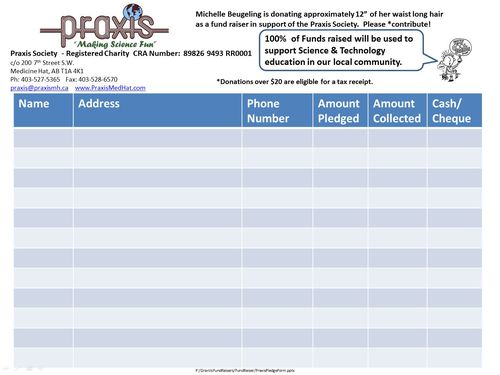 pledge annual form fund