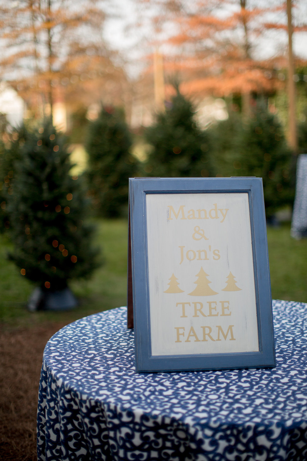 downtown raleigh christmas tree farm wedding