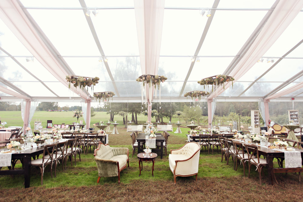 tented at home backyard wedding reception