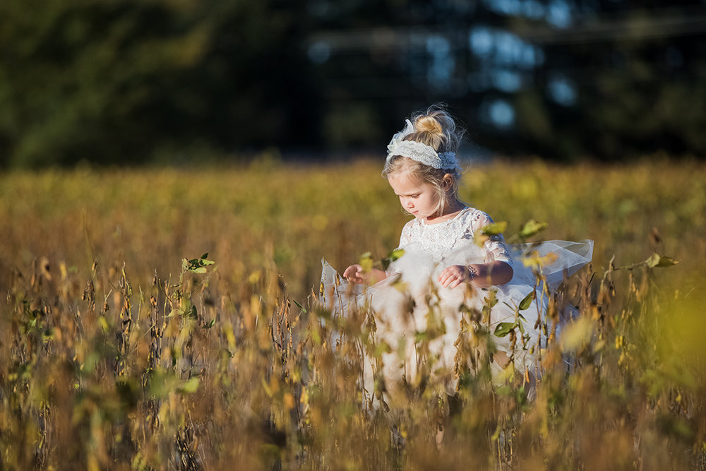 North Carolina fall tobacco farm wedding flower girl
