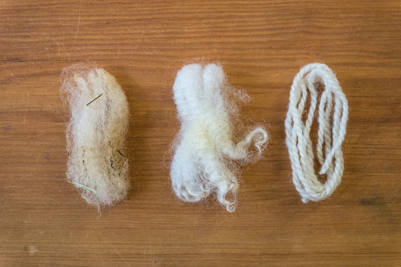 Raw wool, scoured wool, yarn.