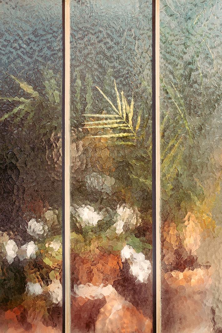Arecaceae Palmae