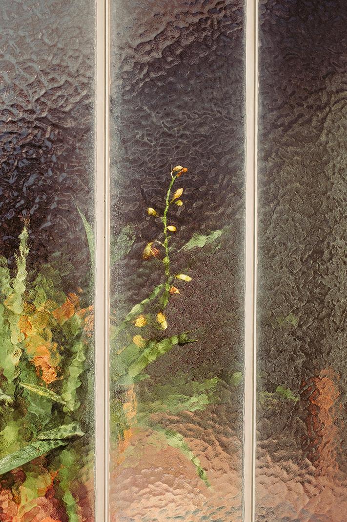 samuel-zeller-geneva-botanical-6679.jpg