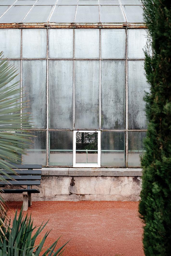 samuel-zeller-geneva-botanical-7661.jpg