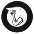 new logo for google +.jpg