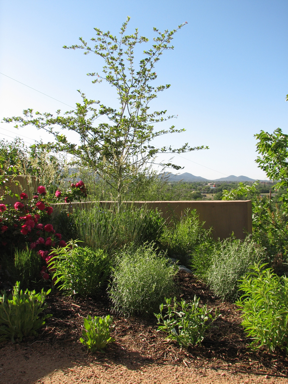 garden with mountain views