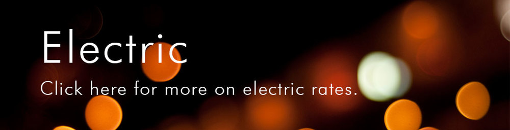 electricBUSINESS.jpg