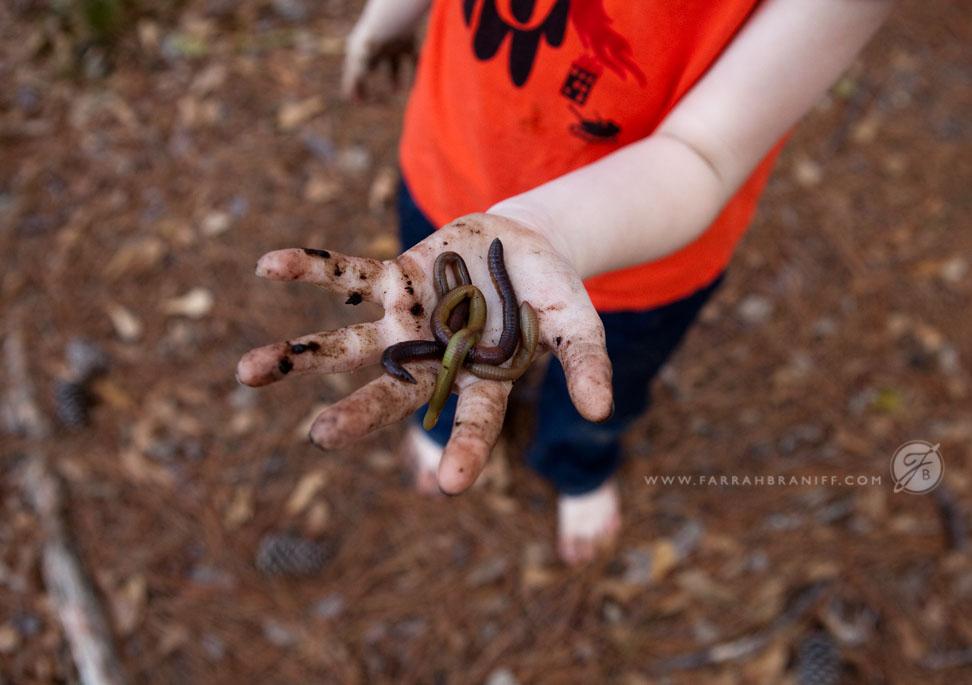 Scoutsblog_5910.jpg