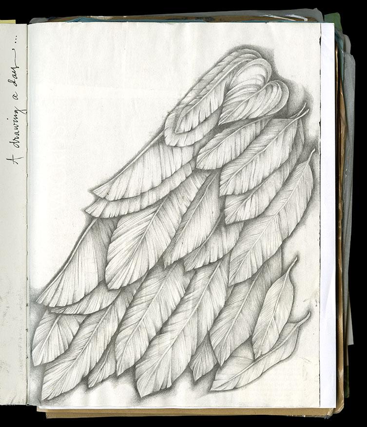Sketch_8.jpg
