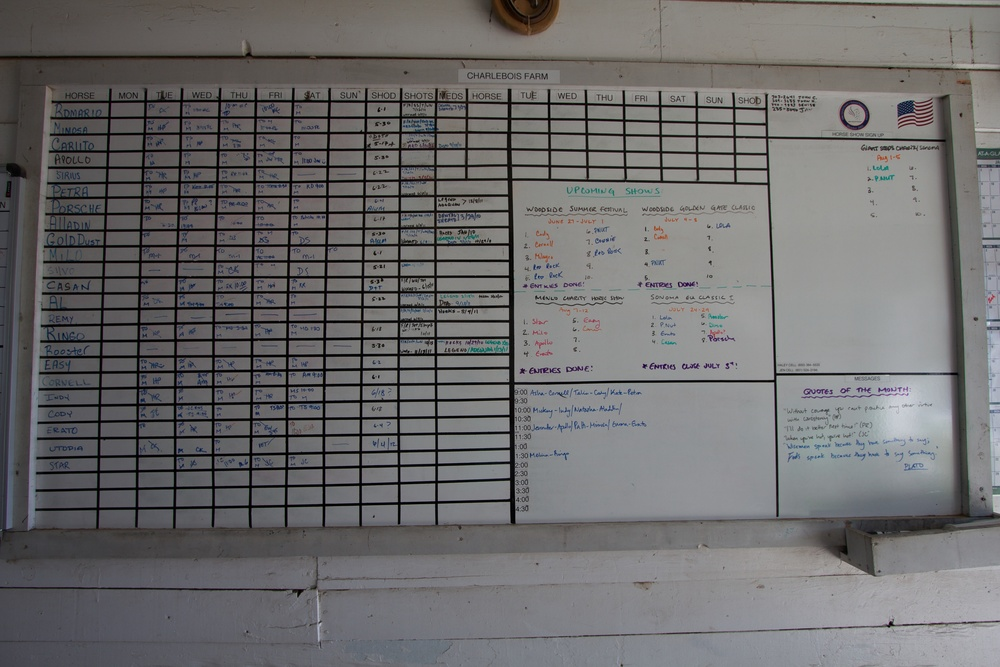 Scheduling white board