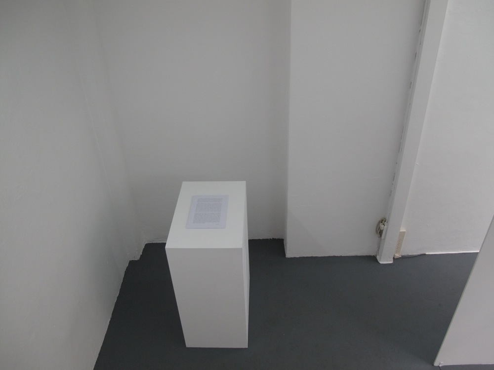 Excrept from exhibition text by Noi Fuhrer