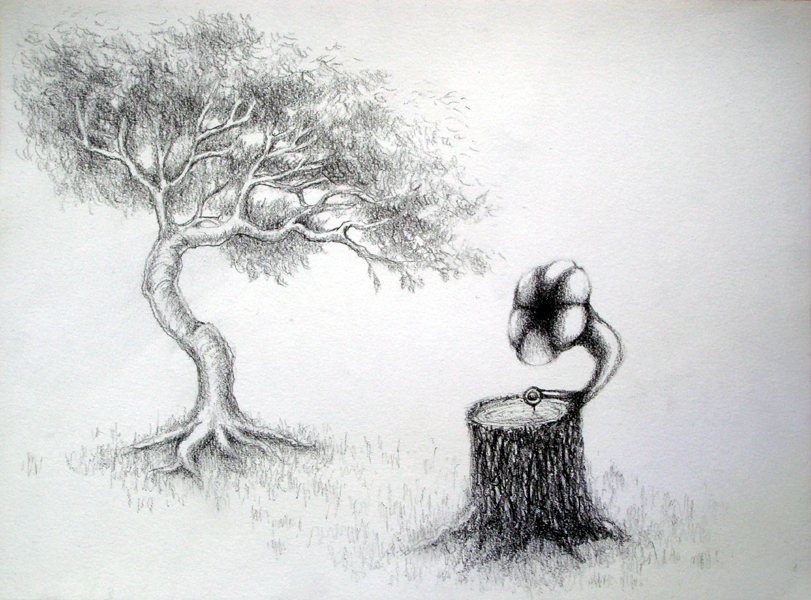 study for 'old tree', grapite on paper, 9x12