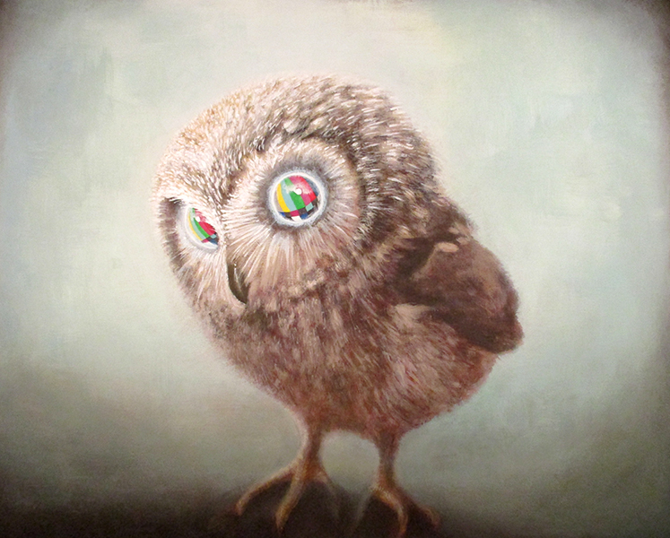 owlet (please stand by), mixed media on wood panel, 32x40