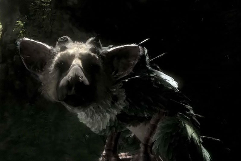 The Last Guardian (PS3)