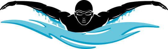 swimming-butterfly-clipart-free-clipart-images.jpg