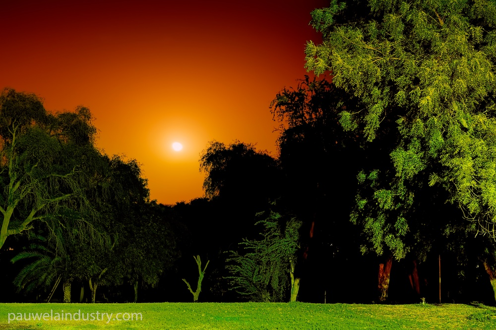 Moonrise in Al Awir at Ali's farm