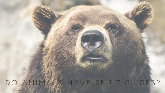 spirit guides.jpg