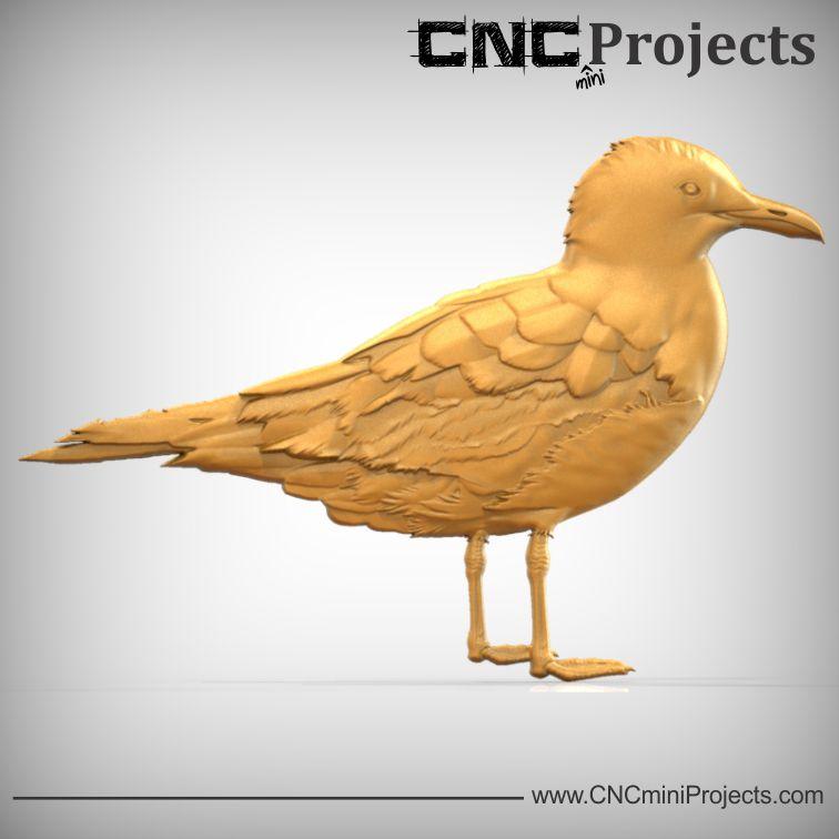 Seagull No.1.jpg