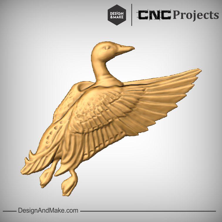 Mallard Duck No.2.jpg
