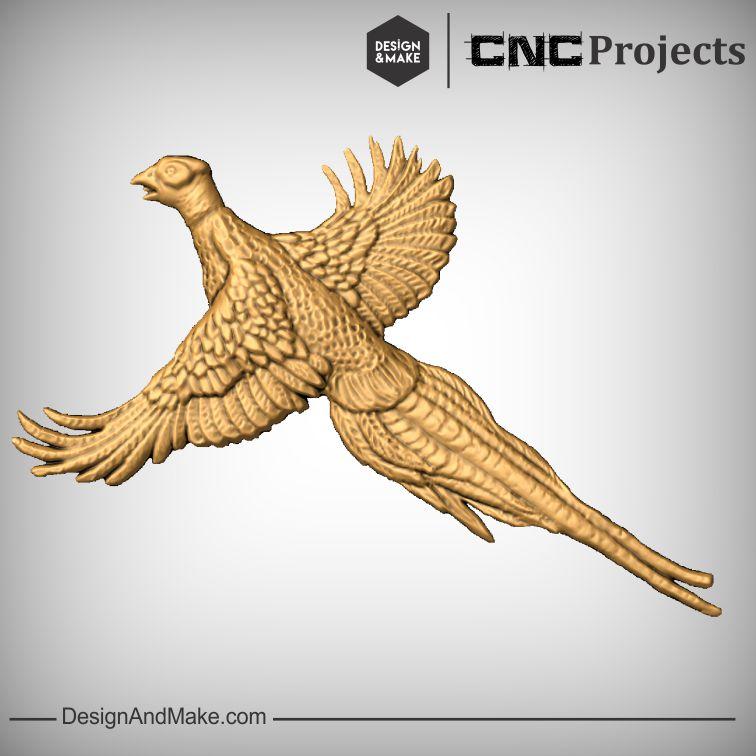Pheasant No.1.jpg