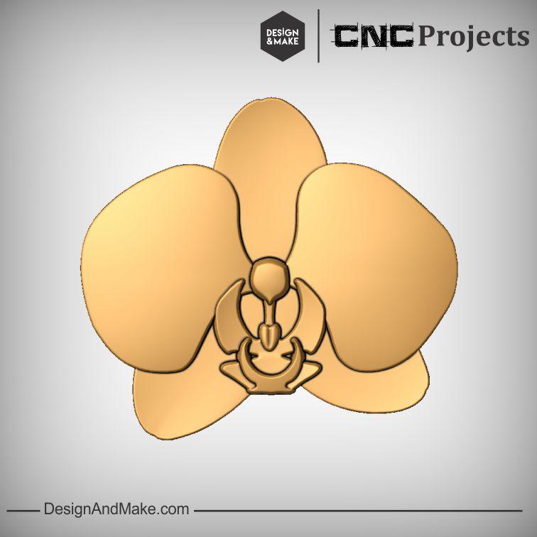 Orchid No.1.jpg