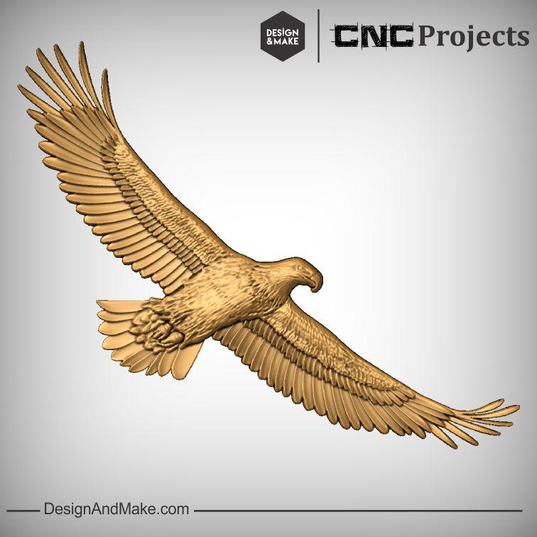 Eagle No.5.jpg