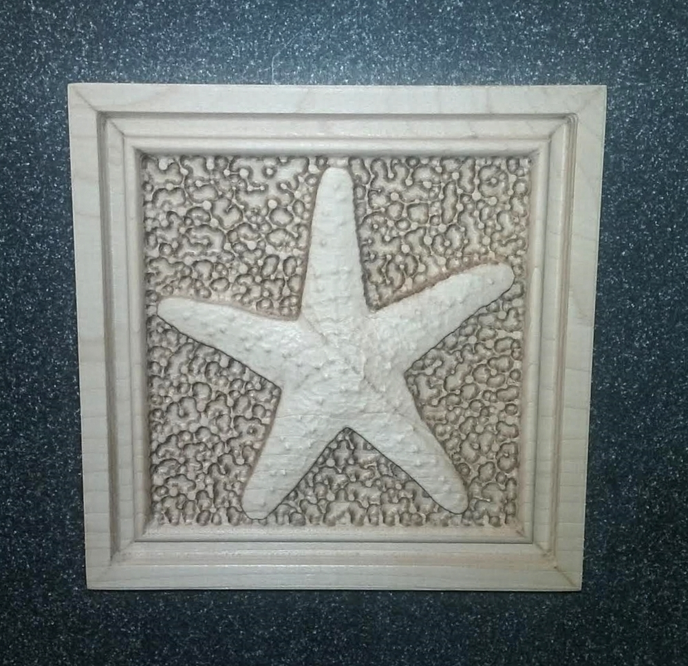 A starfish panel