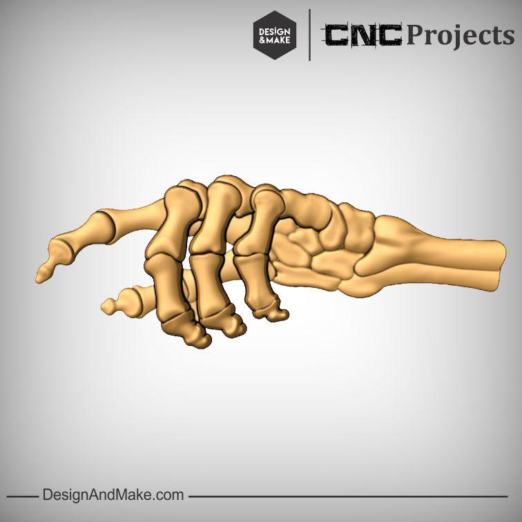Bony Hand No.2.jpg