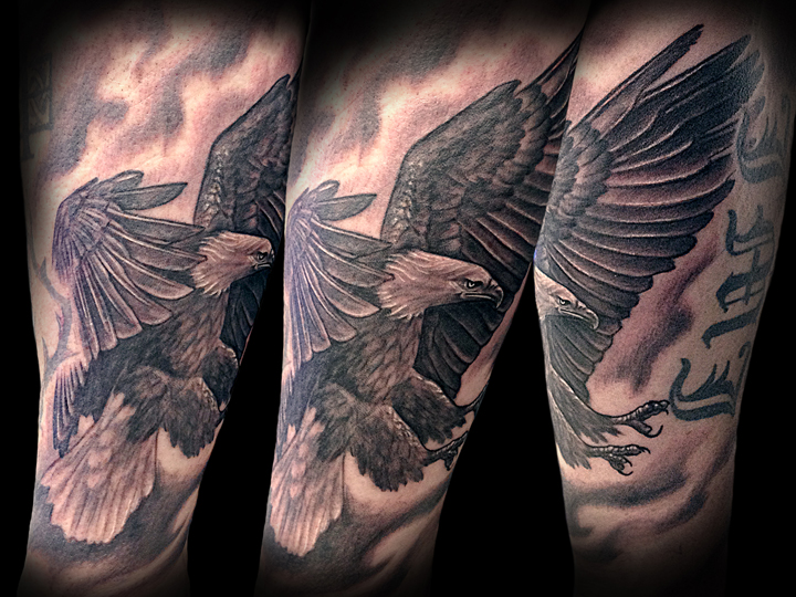 6x8 a112 eagle patrick.jpg