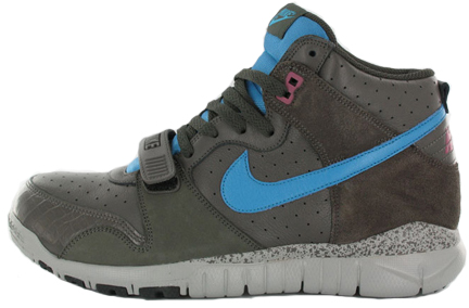 nike-dunk-trainer-free-high-main.jpg