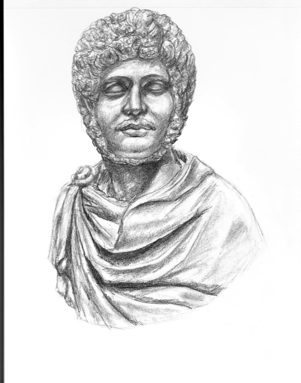 Emperor Hadrian Bust sketch.jpg