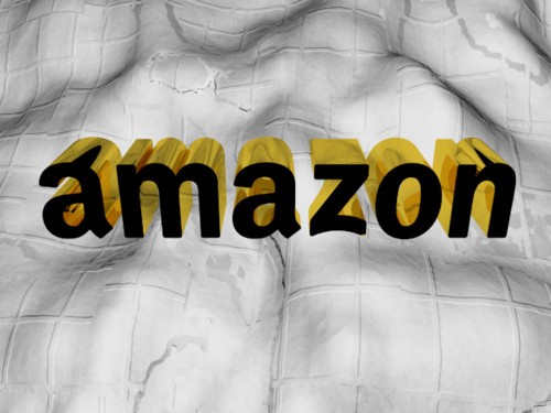 amazon in 3D.png