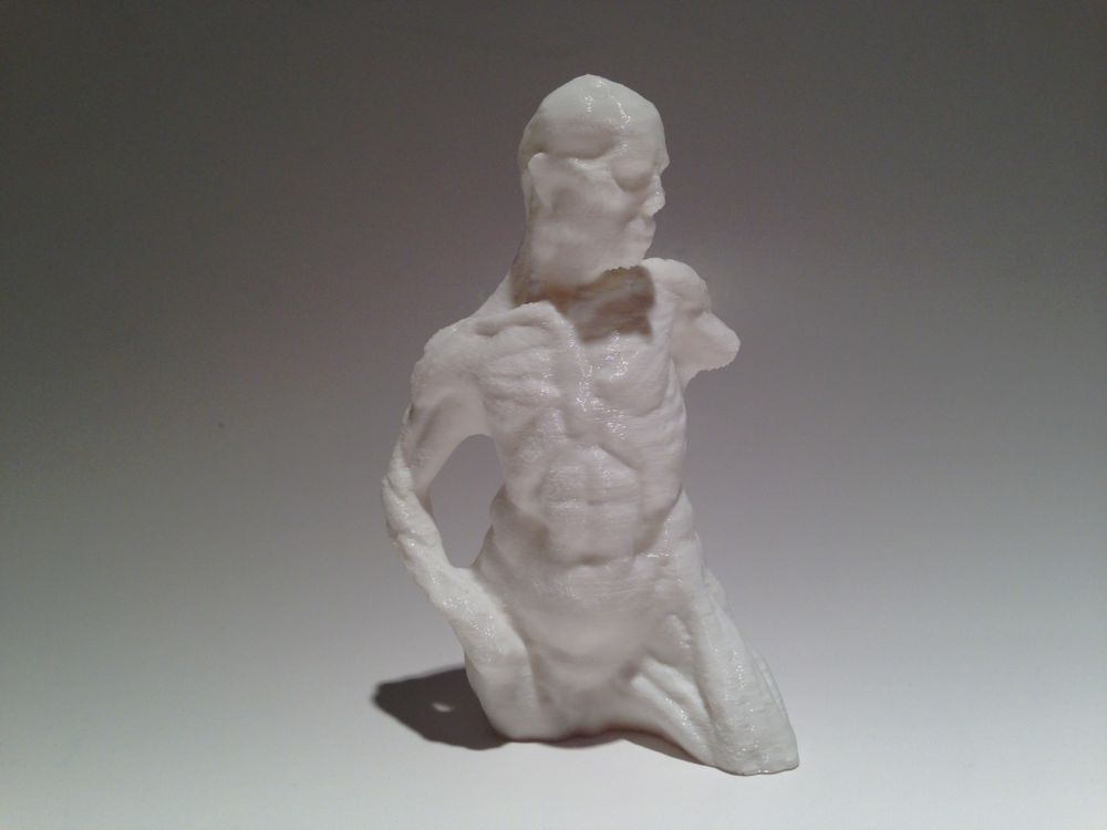 Clay sculpture printed.jpg