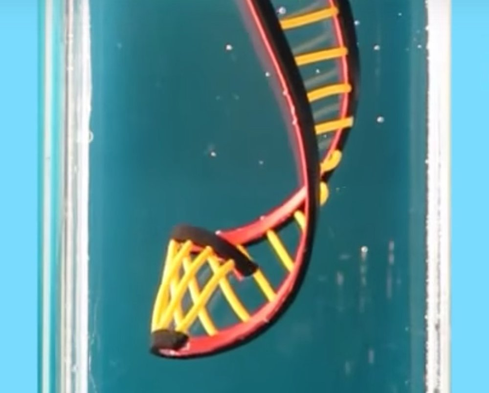 Automatically twisting 3D printed DNA shape