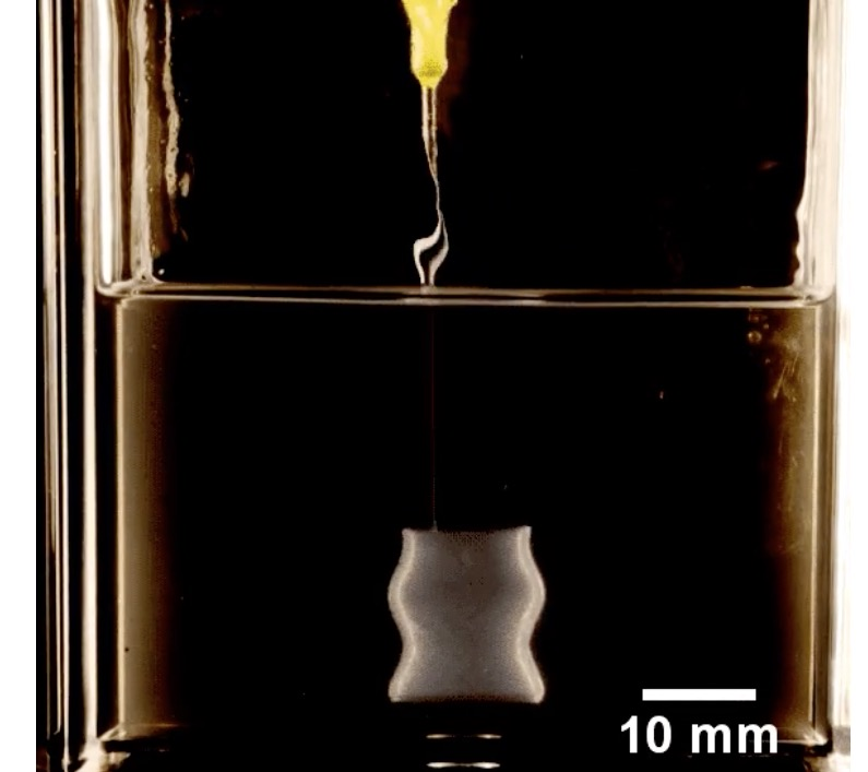 "New ""organogel"" for 3D printing medical implants"