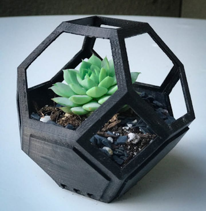 A single 3D printed Plantygon with succulent plant inside