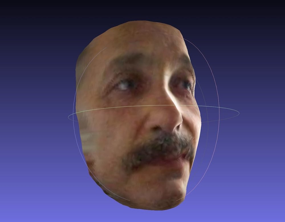 Albert Einstein in 3D, sans fuzzy hair