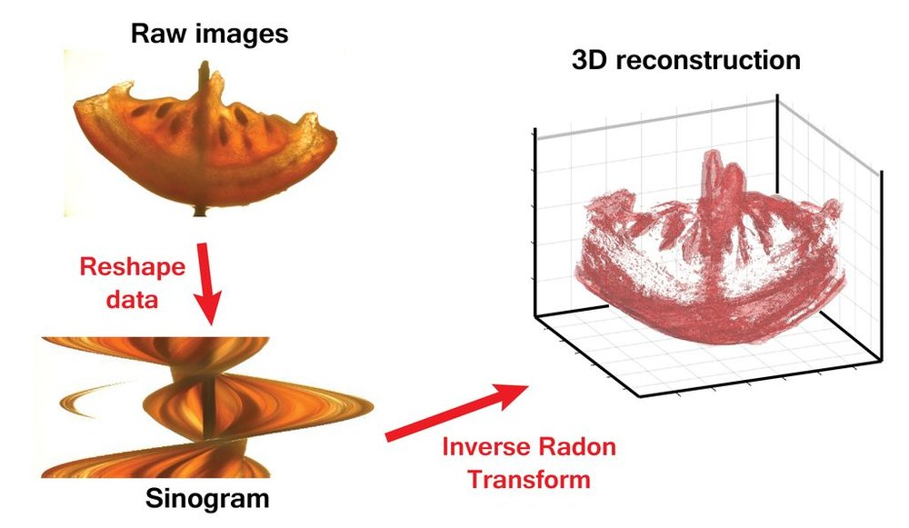 The transparent object's interior can be 3D scanned with the CT Scanner