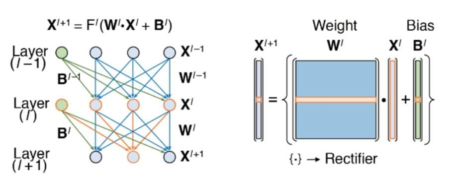 A software design for a neural network