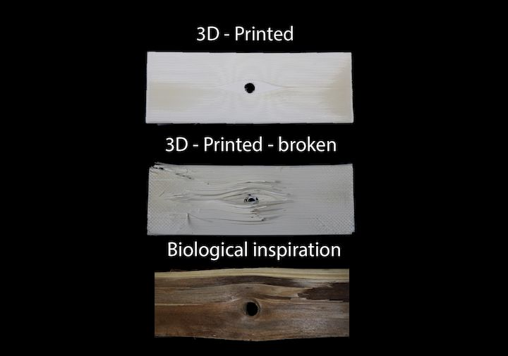 Liquid crystal polymers could enable ultra-strong 3D prints [Source: ETH Zürich]