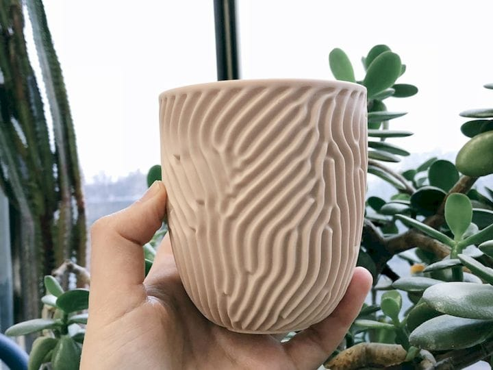 The Coral Cup [Source: Nervous System]