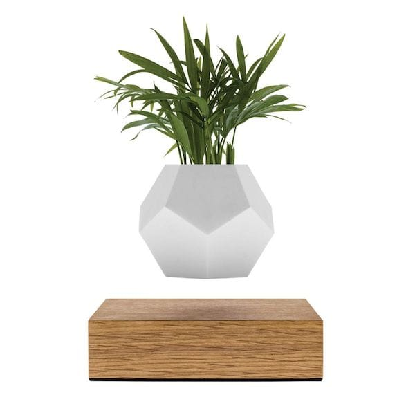 The original LYFE levitating planter from Flyte [Source: Flyte]