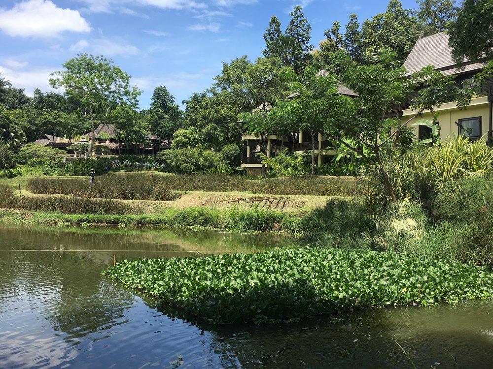 Chiang Mai Four Seasons