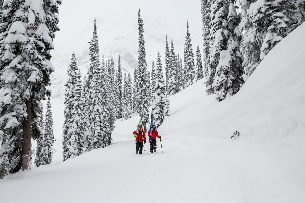 Fernie Alpine Resort - February 8th & 9th Powder Web Resolution-7.jpg